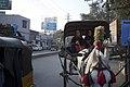Mathura, India (20566640354).jpg