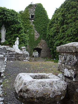 Mayo, County Mayo - Remains of Mayo abbey church
