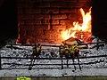 Meat Cooking on Skewers - Berehove - Ukraine (36296845680) (2).jpg