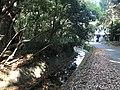 Meijigawa River near Oyamazumi Shrine Museum.jpg