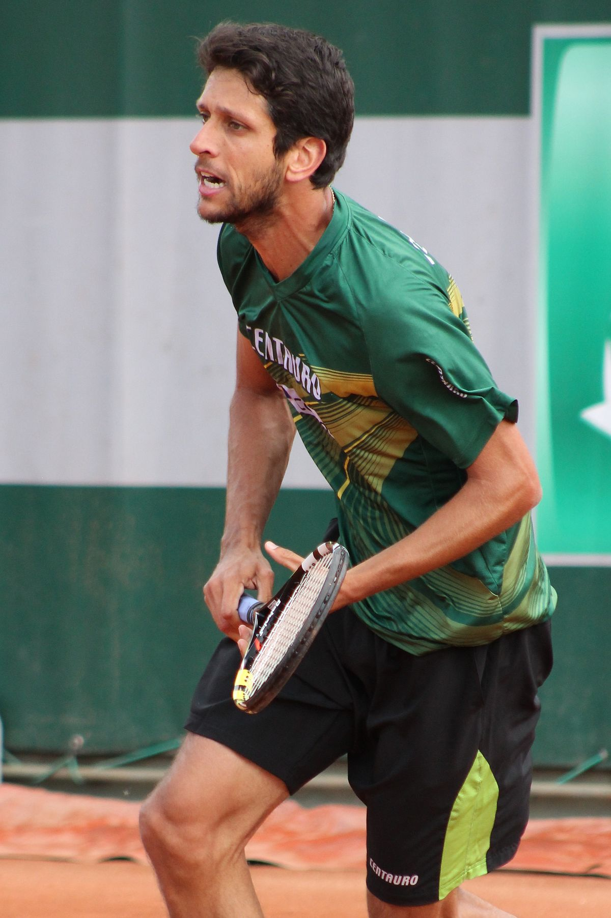Marcelo Melo - Wikipedia