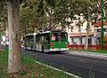 Milano viale Umbria filobus corsia riservata.JPG