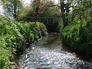 River Bourne, Addlestone - Image: Mill Bourne geograph.org.uk 166146