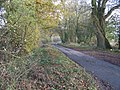 Minor road near New Bridge - geograph.org.uk - 1594915.jpg
