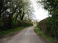 Minor road north of Norton Manor - geograph.org.uk - 155219.jpg
