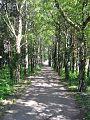 Mitterndorf an der fischa juni2007 nr03.jpg