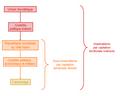 Modèle de contrôle par captation territoriale indirecte par contrôle politique.PNG