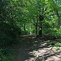 Monken Hadley Common.jpg