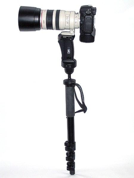 450px-Monopod.jpg