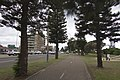 Monterey NSW 2217, Australia - panoramio (10).jpg