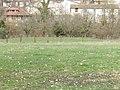 Motte castrale richardmenil.jpg