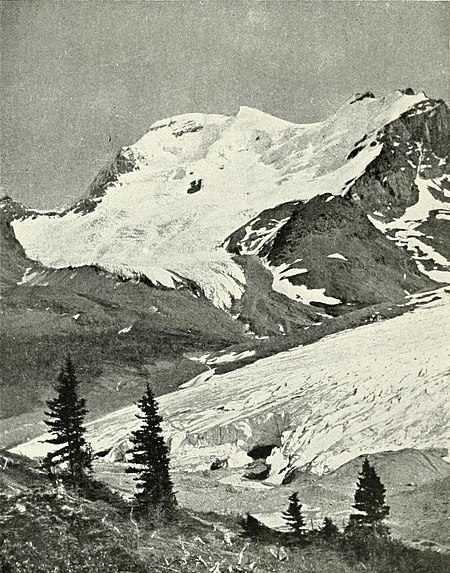 Mount Athabasca, from Wilcox Pass.jpg