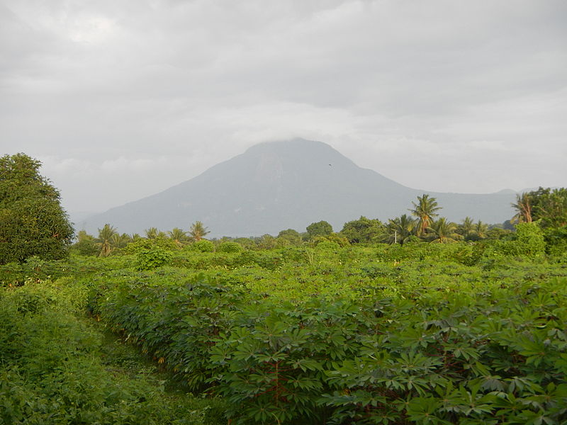 View from the top of Mount Maculot