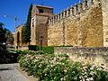 Muralla de la Puerta de Almodovar, Córdoba..JPG