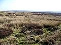 Mynydd Hiraethog. Denbigh Moors - geograph.org.uk - 379135.jpg