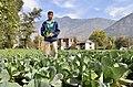 NP Himachal Pradesh 71 (6348260550).jpg