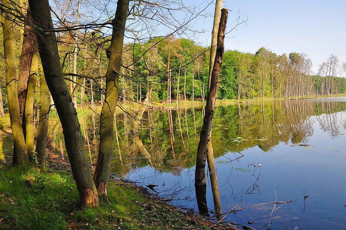 Müritz Nationalpark