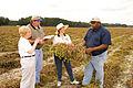 NRCSFL07010 - Florida (715598)(NRCS Photo Gallery).jpg