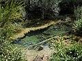 Nacimiento rio Cuervo 2.JPG