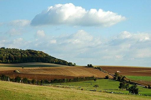 Neufchâtel-en-Bray campagne environnante 1
