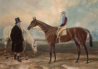 Newminster (horse) British-bred Thoroughbred racehorse