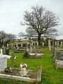 Newton Abbot cemetery - geograph.org.uk - 1690221.jpg