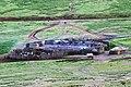 Ngorongoro 2012 05 30 2347 (7500936804).jpg