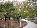 Niigata Hakusan Park Air garden 20131101-01.JPG