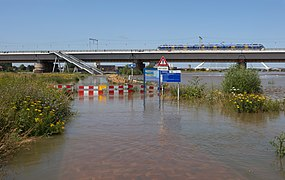 Nijmegen, het Ossenwaardpad naar de Snelbinder tijdens hoog water in de Waal IMG 9779 2021-07-18 12.05.jpg