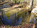 Nimblewill Creek - panoramio (1).jpg