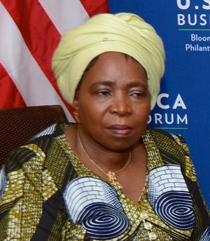 Nkosazana Dlamini-Zuma - Image: Nkosazana Dlamini Zuma 2014