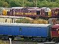 No.37405 (Class 37) (6053550325).jpg
