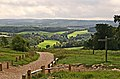 North Downs Way at Newlands Corner - geograph.org.uk - 233971.jpg