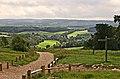 North Downs Way at Newlands Corner - geograph.org.uk - 233971.jpg