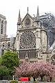 Notre-Dame de Paris - Après l'incendie 06.jpg