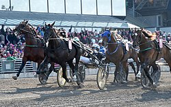 Nuncio wins Elitloppet 2016.jpg