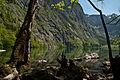 Obersee 3.jpg