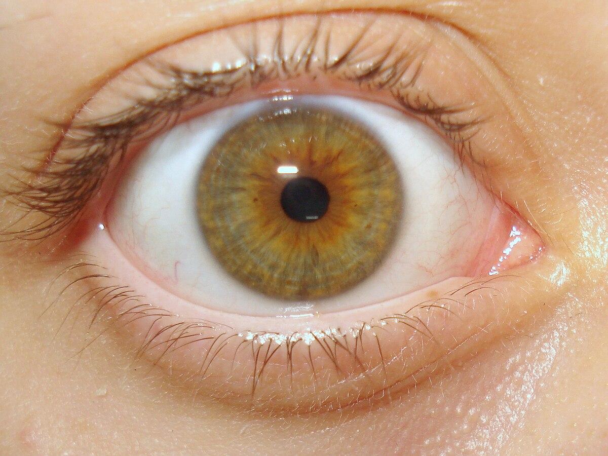 Kleine Pupillen