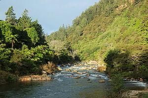 Ohinemuri River - Ohinemuri River at Karangahake