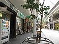 Okayama Omotecho Shopping street - panoramio (15).jpg