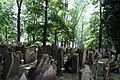 Old Jewish Cemetery 2 (2540804693).jpg