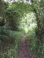 Old lane crossing Mulberry Downs - geograph.org.uk - 30928.jpg