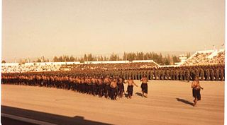 Firqa (military) organization