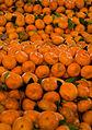 Oranges! (Imagicity 212).jpg