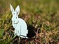 Osterhase im Gras.jpg