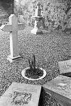 overzicht begraafplaats bij de nederlands hervormde kerk - stevensweert - 20205852 - rce