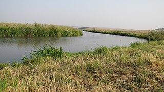 Bolshoy Uzen River river