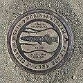 Palmerston North koaro drain MRD.jpg
