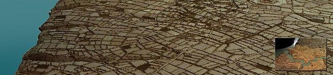 Vitesse datant de Harrogate limace et laitue