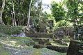 Parque Yaxha Nakum Naranjo Sitio Nakum Enero 2015 03.JPG